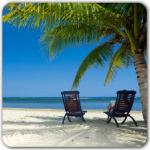 Palm trees beach relax